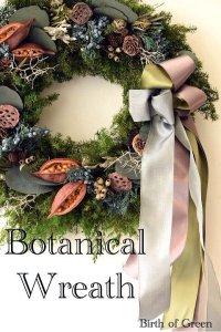 Christmas Wreath (Botanical)